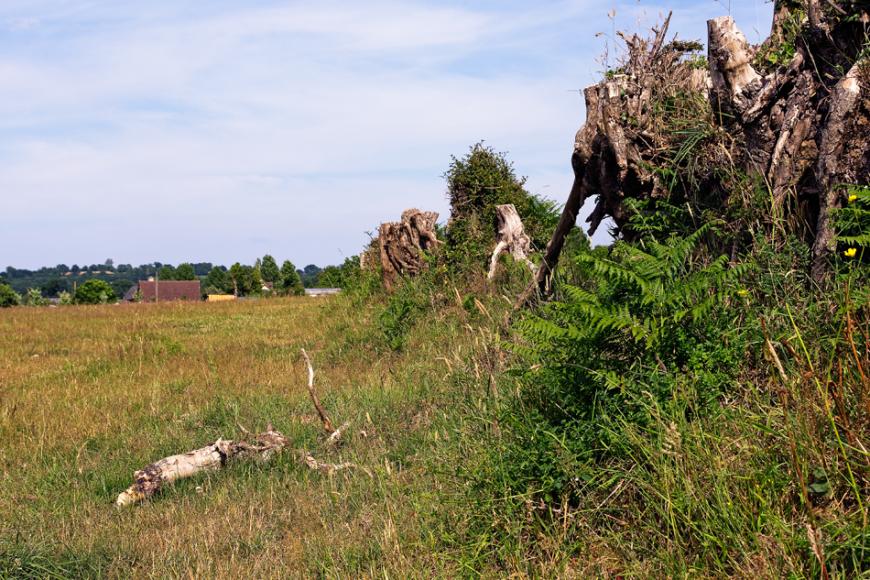 Feugroles, sur la Commune de Domjean